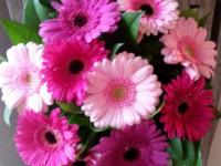 Blomstertilbud
