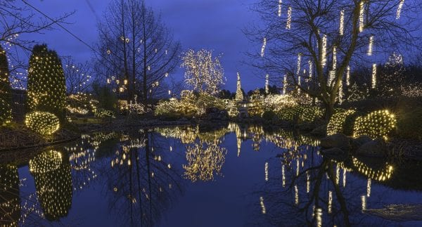 Jul i Birkegårdens Haver