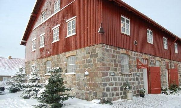 Vinter på Mineslund
