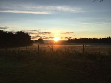 Godmorgen fra Tømmerup