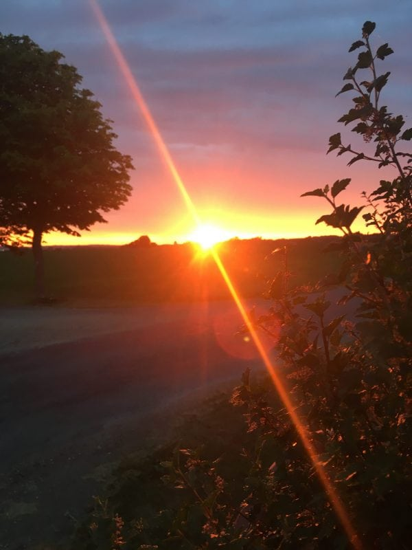 Solnedgang over Kalundborg