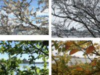De fire årstider