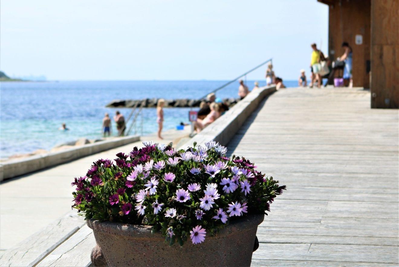 Rift om danske sommerhuse i efterårsferien
