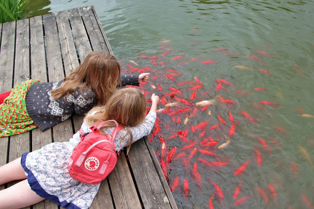 Sjove og hyggelige familiedage i Birkegårdens Haver