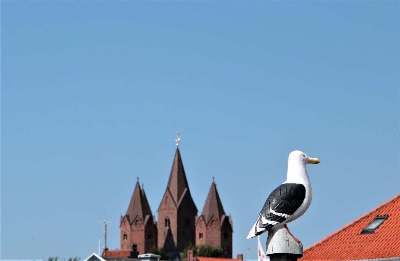 Kalundborg Havn gennem 1000 år